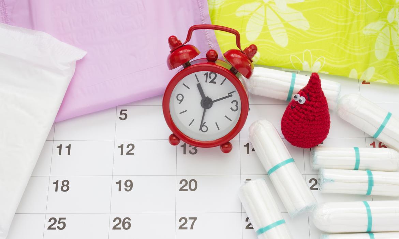 ovulação período fértil