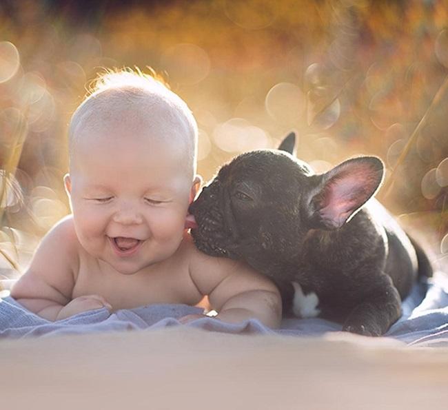 fotos de bebês e cachorros