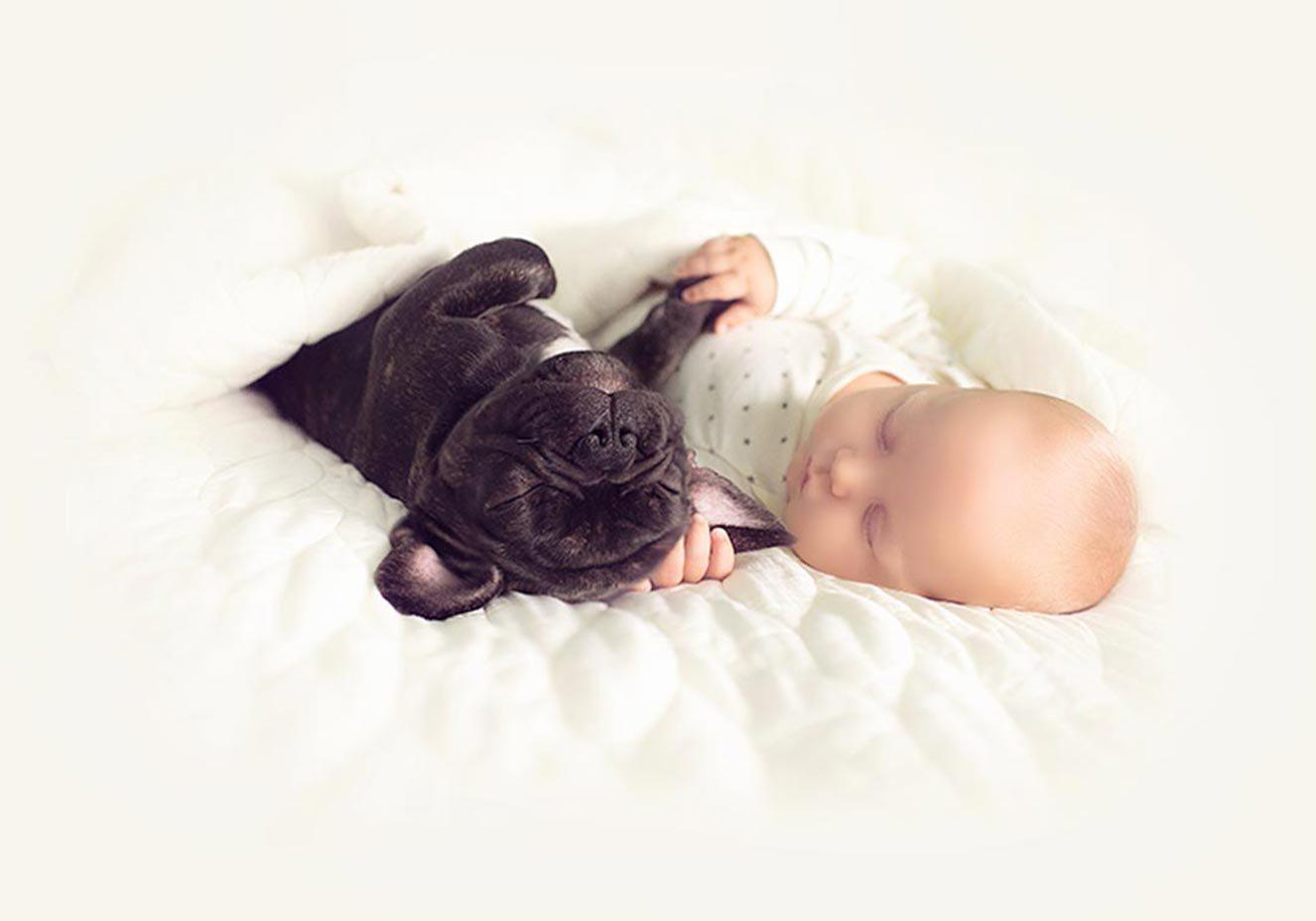 fotos de bebês com cachorro
