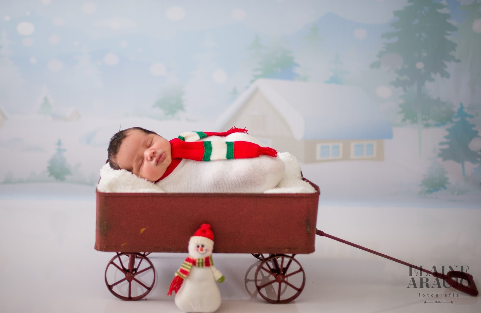 ensaio newborn natal