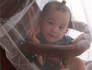 como proteger os bebês das picadas de insetos